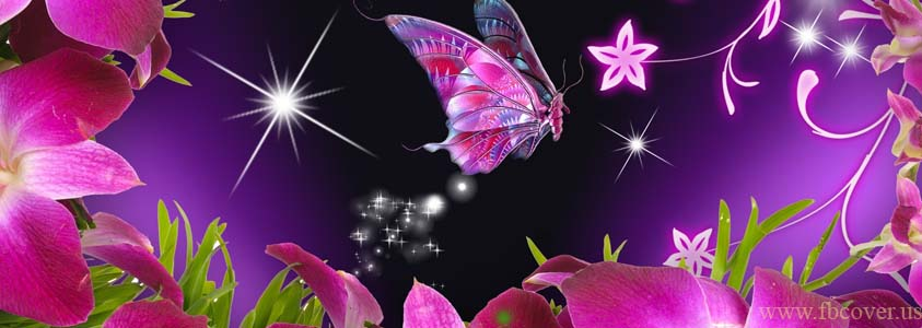 Butterfly Fb Cover Photos - 0011