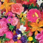 Hd Flower Wallpapers For Desktop (3)