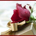 valentine flower pictures