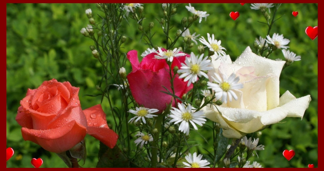 Best Happy Valentine Roses HD Wallpapers Collection 2018