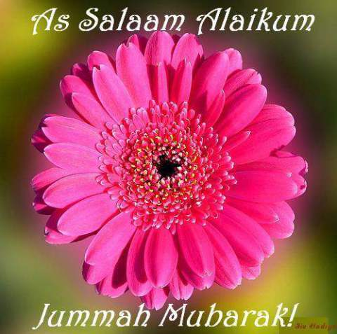 Jumma Mubarak Latest HD Wallpapers Free Download for mobile
