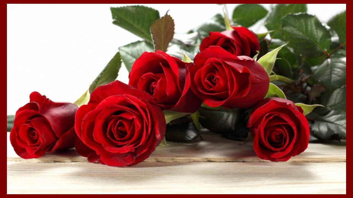 Happy Valentine Roses HD Wallpapers Collection 010
