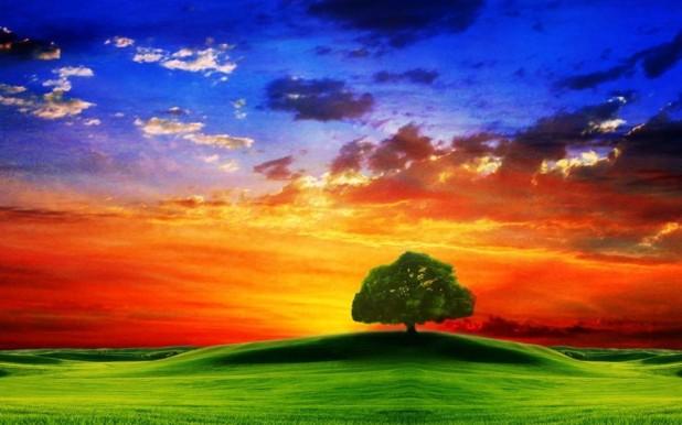 Beautiful Natural HD wallpapers