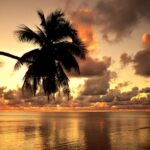 sunset hot wallpapers
