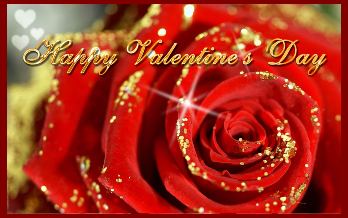 Download Happy Valentine 39 S Day Red Rose Wallpaper Free