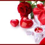 Valentine Rose HD desktop wallpaper