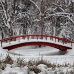 Beautiful Winter Wallpapers For Your Desktop (1)