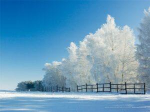 winter wonderland wallpapers desktop