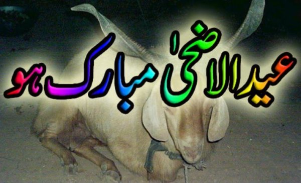 Eid Ul Adha (Bakra Eid) Best Wishing Eid Ul Azha Quotes (5)