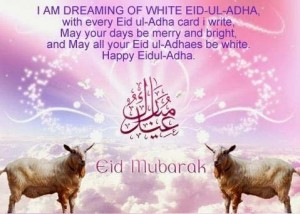 Eid ul Adha Bakra Eid Latest HD wallpapers Collection 2014 - 2015 (3)