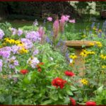 Wallpaper flowers, garden, park, forest, grass, flower (3)