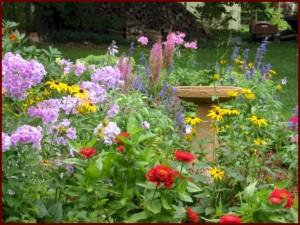 Wallpaper flowers, garden, park, forest, grass, flower (3)