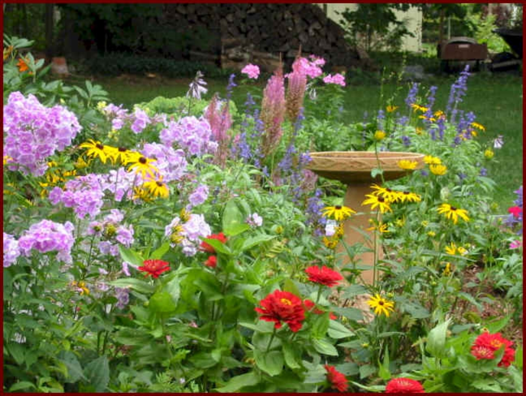 Flower Garden Ideas Beginners sample images Wallpaper Flowers Garden Park Forest Grass Flower 3