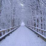 winter wonderland myspace layouts