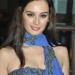 Evelyn Sharma in Jeans Tights HD Wallpapers