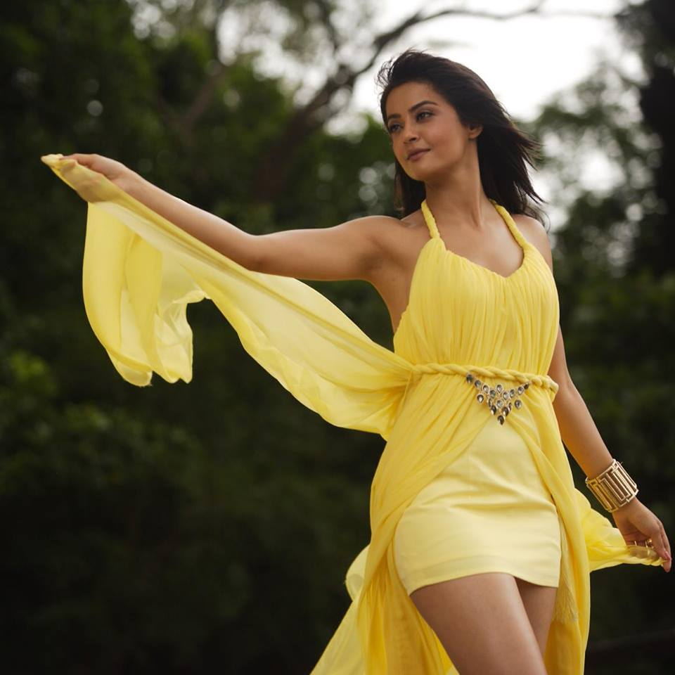 Surveen Chawla Punjabi  Indian actress Profile Picture