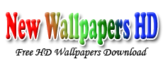 New HD Wallpapers Pictures Free Download