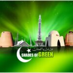 Backgreen Independence Day 14 August 2015 HD Wallpapers