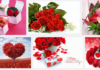 Valentine's Day Flowers Images download
