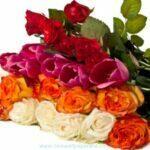 Valentines-Day-flowersfasd
