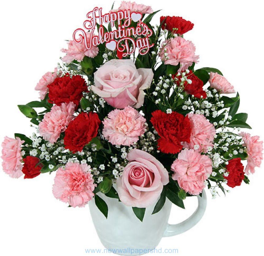 valentine day flowers hd images photos pics  hd walls, Beautiful flower