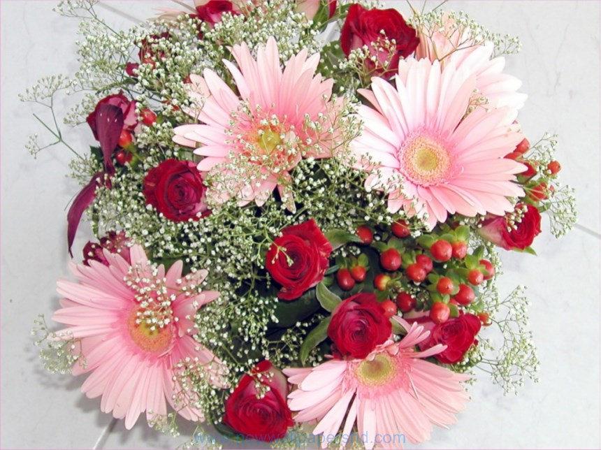 Valentine day flowers hd images photos pics hd walls valentines day flowers besides roses voltagebd Image collections