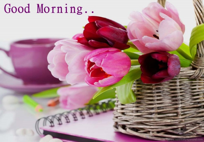 good morning wallpaper hindi new