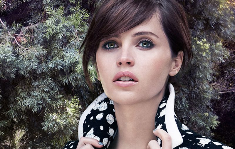 Felicity Jones hollywood actress HD wallpapers
