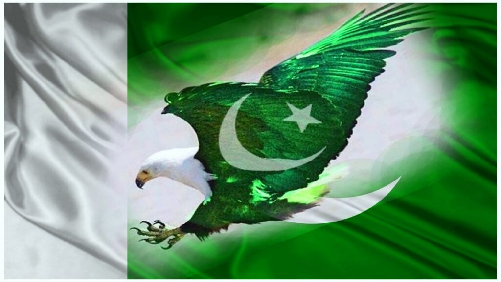 Shaheen Eagle Pakistan flag HD 14 august HD wallpapers